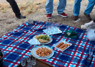 picnic-horts2